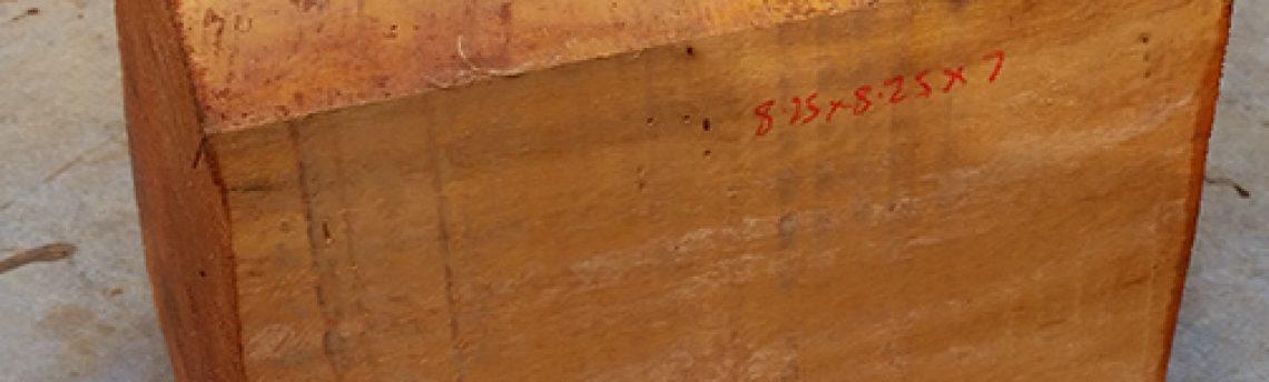 Woodturning blanks – Hybrid Mahogany from Puerto Rico