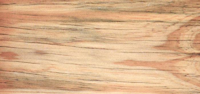 Pino caribeño