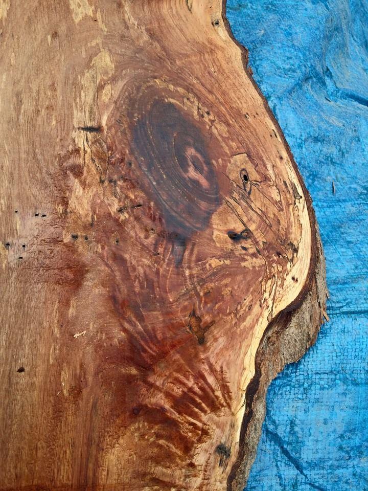 slidewood-90.jpg